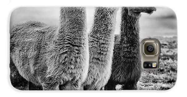 Lama Lineup Galaxy S6 Case by John Farnan