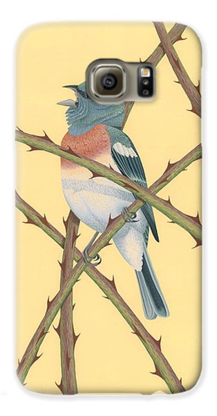 Lazuli Bunting Galaxy S6 Case by Nathan Marcy