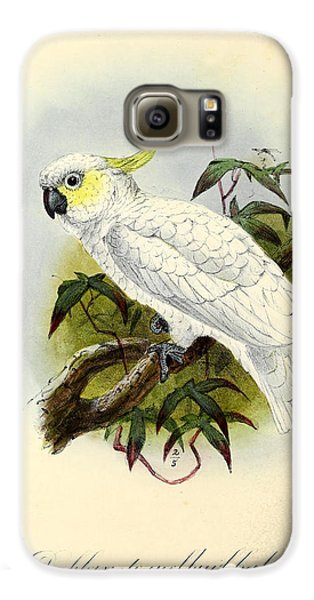 Lesser Cockatoo Galaxy S6 Case by J G Keulemans