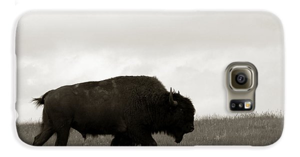 Lone Bison Galaxy S6 Case by Olivier Le Queinec