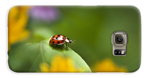 Lonely Ladybug Galaxy S6 Case by Christina Rollo