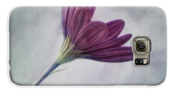 Looking For You Galaxy S6 Case by Priska Wettstein