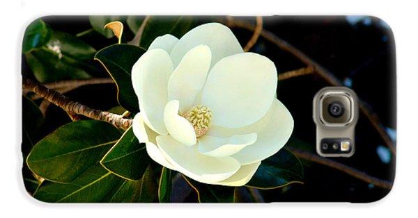 Magnolia Grandiflora Galaxy Case by Hanza Turgul