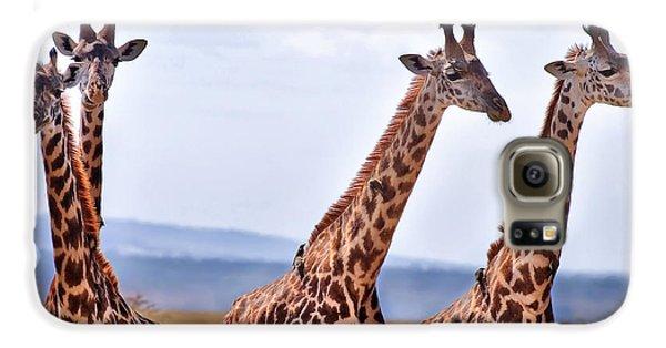 Masai Giraffe Galaxy S6 Case by Adam Romanowicz