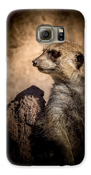 Meerkat 12 Galaxy S6 Case by Ernie Echols