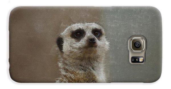 Meerkat 5 Galaxy S6 Case by Ernie Echols