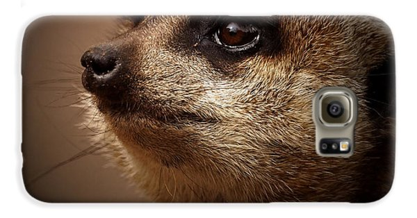 Meerkat 6 Galaxy S6 Case by Ernie Echols
