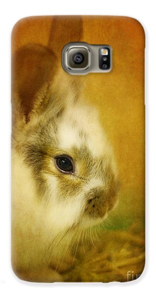 Memories Of Watership Down Galaxy S6 Case by Lois Bryan
