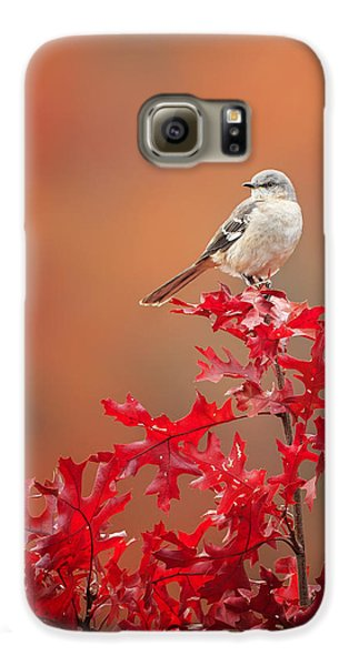 Mockingbird Autumn Galaxy S6 Case by Bill Wakeley