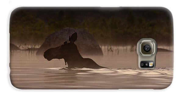 Moose Swim Galaxy S6 Case by Brent L Ander