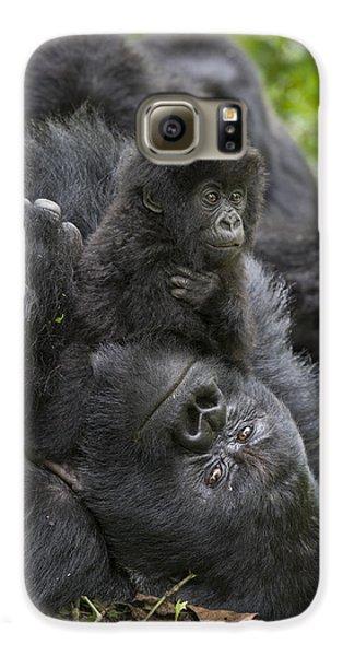 Mountain Gorilla Baby Playing Galaxy S6 Case by Suzi  Eszterhas
