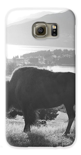 Mountain Wildlife Galaxy S6 Case by Pixel  Chimp
