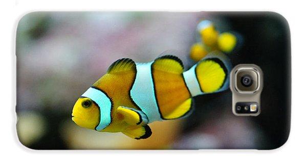 Nemo From Barcelona Galaxy S6 Case by Stephan Yankov