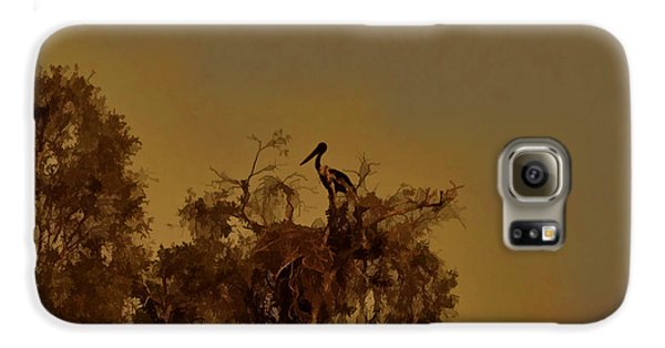 Nesting Jabiru  Galaxy S6 Case by Douglas Barnard