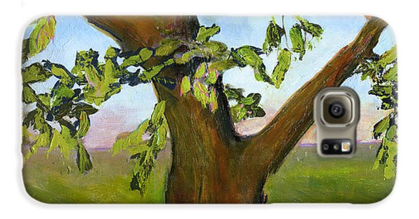 Nesting Tree Galaxy S6 Case by Blenda Studio