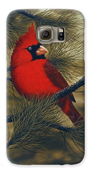 Northern Cardinal Galaxy S6 Case by Rick Bainbridge