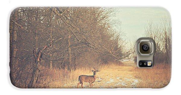 November Deer Galaxy S6 Case by Carrie Ann Grippo-Pike