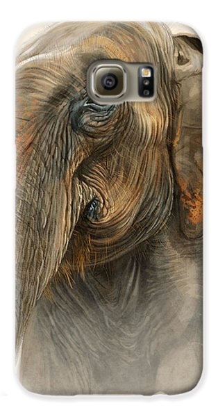 Old Lady Of Nepal 2 Galaxy S6 Case by Aaron Blaise