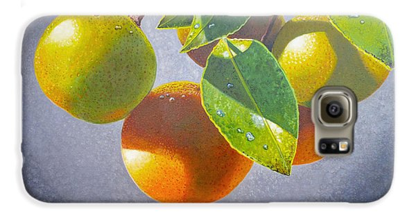 Oranges Galaxy S6 Case by Carey Chen