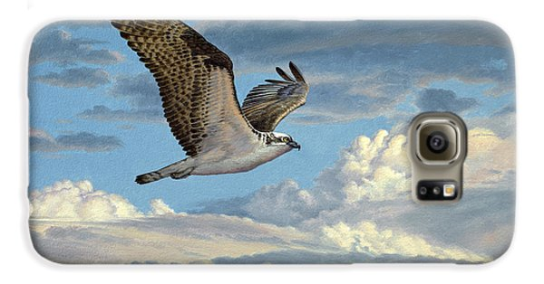 Osprey In The Clouds Galaxy S6 Case by Paul Krapf