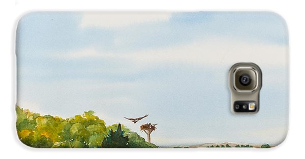 Ospreys On The Vineyard Watercolor Painting Galaxy S6 Case by Michelle Wiarda