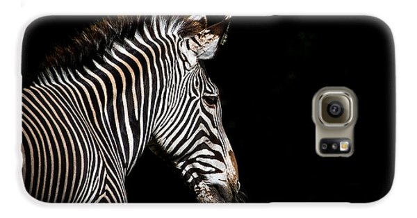 Out Of The Shadows Galaxy S6 Case by Scott Mullin