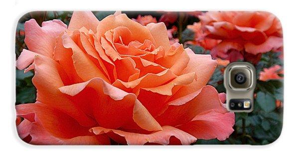 Peach Roses Galaxy S6 Case by Rona Black