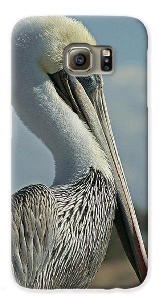 Pelican Profile 3 Galaxy S6 Case by Ernie Echols