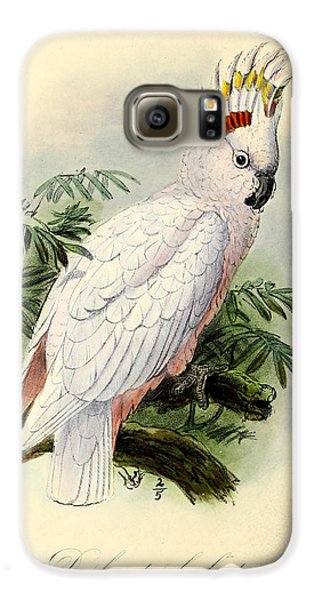 Pied Cockatoo Galaxy S6 Case by J G Keulemans