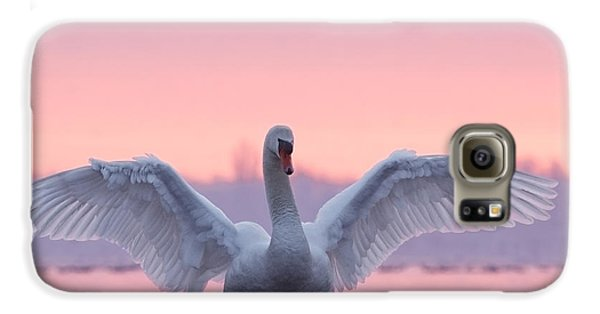 Pink Swan Galaxy S6 Case by Roeselien Raimond