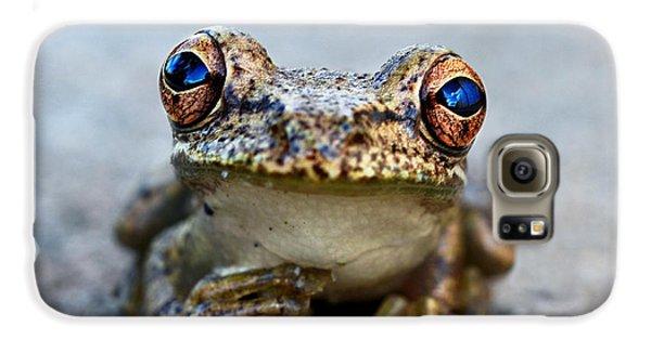 Pondering Frog Galaxy S6 Case by Laura Fasulo