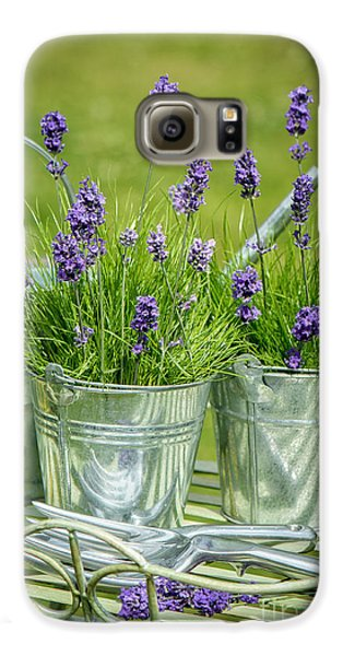 Pots Of Lavender Galaxy S6 Case by Amanda Elwell