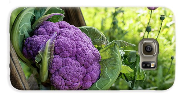 Purple Cauliflower Galaxy S6 Case by Aberration Films Ltd