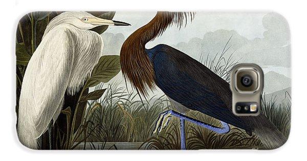 Purple Heron Galaxy S6 Case by John James Audubon
