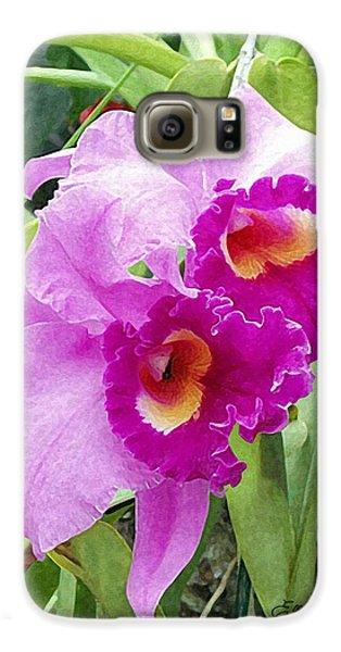 Purple Cattleya Orchids Galaxy S6 Case by Ellen Henneke