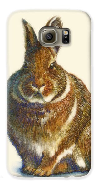 Rabbit Galaxy S6 Case by Catherine Noel