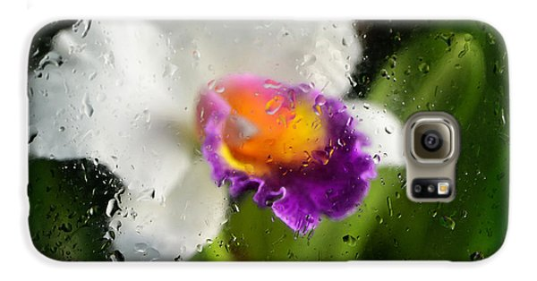 Rainy Day Orchid - Botanical Art By Sharon Cummings Galaxy S6 Case by Sharon Cummings