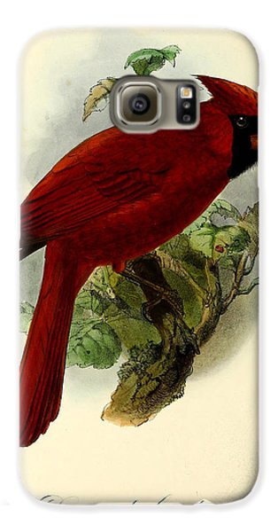 Red Cardinal Galaxy S6 Case by J G Keulemans