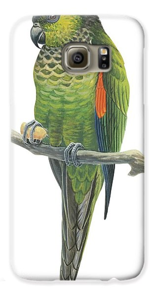 Rock Parakeet Galaxy S6 Case by Anonymous