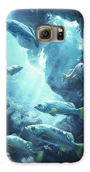 Rockfish Sanctuary Galaxy S6 Case by Javier Lazo