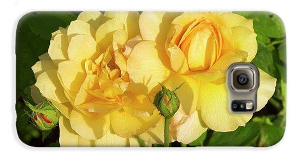 Rosa 'pegasus' Galaxy S6 Case by Adrian Thomas