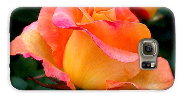 Rose Beauty Galaxy S6 Case by Rona Black