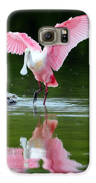 Roseate Spoonbill Galaxy S6 Case by Clint Buhler