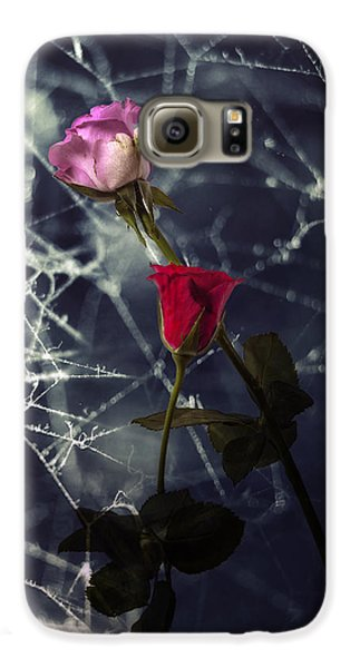 Roses With Coweb Galaxy S6 Case by Joana Kruse