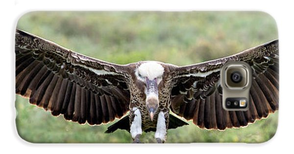 Ruppells Griffon Vulture Gyps Galaxy S6 Case by Panoramic Images
