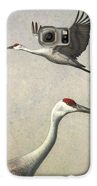 Sandhill Cranes Galaxy S6 Case by James W Johnson