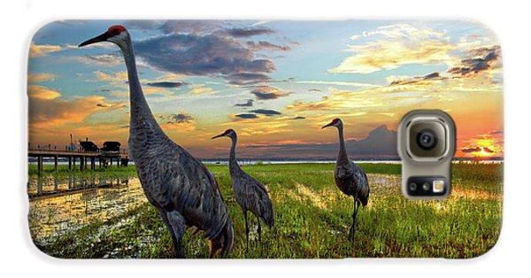 Sandhill Sunset Galaxy S6 Case by Debra and Dave Vanderlaan