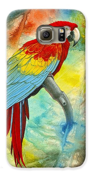 Scarlet Macaw In Abstract Galaxy S6 Case by Paul Krapf