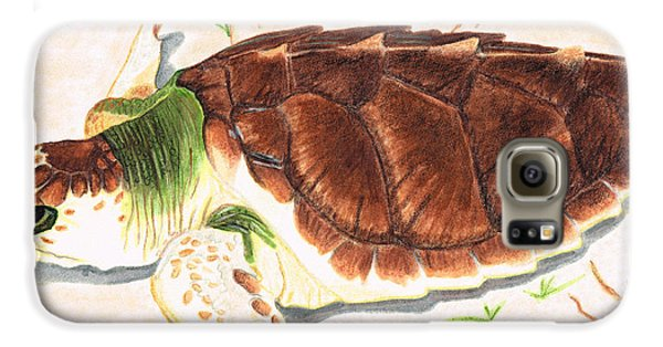 Sea Turtle Art By Sharon Cummings Galaxy S6 Case by Sharon Cummings