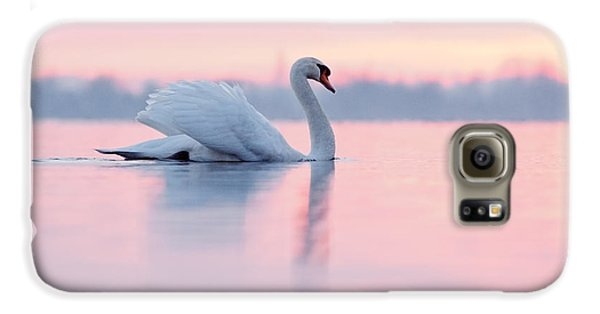 Serenity   Mute Swan At Sunset Galaxy S6 Case by Roeselien Raimond